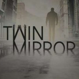 Twin Mirror Cover