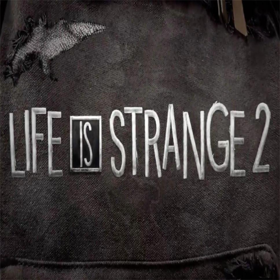 Life is Strange 2 Cover